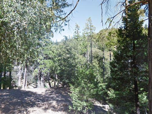 Lot In San Bernardino County, Ca : Cedar Pines Park : San Bernardino County : California