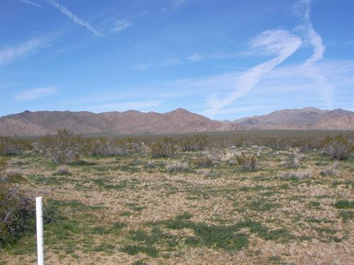 Nice, Scenic, Camp, Build, $246/Mo : Lucerne Valley : San Bernardino County : California