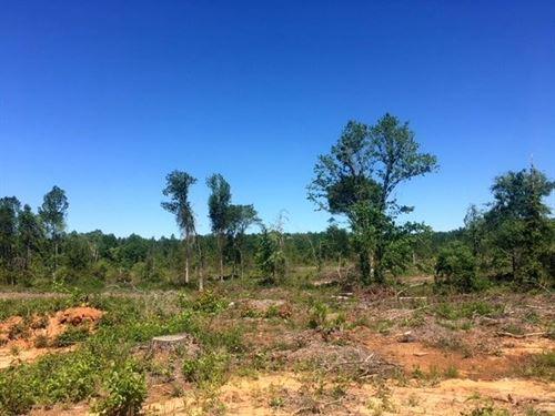 Phelps Creek 87 Acres : Opelika : Lee County : Alabama