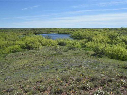 New Price, Hidden Gem, 319 Acres : Seymour : Baylor County : Texas