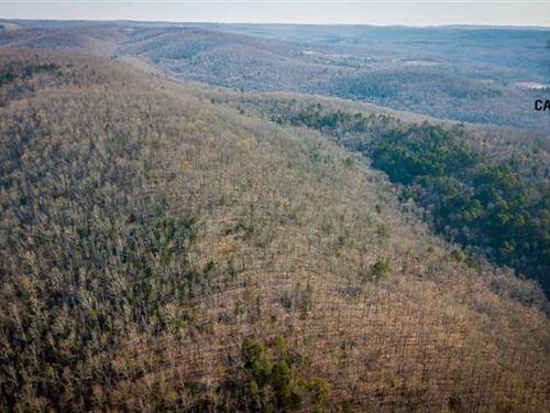 560 ac Shirley AR / 2 Creeks/ Matu : Shirley : Van Buren County : Arkansas