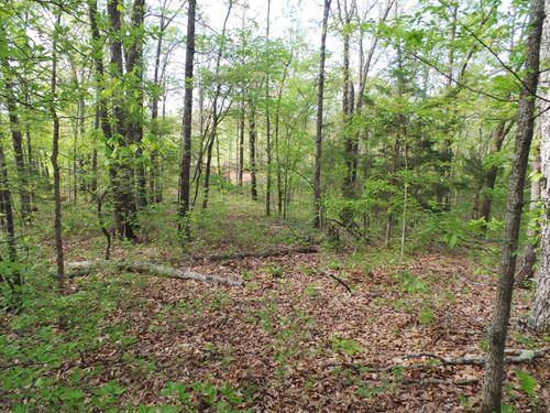 Land Utilities Buffalo River Access : Gilbert : Searcy County : Arkansas