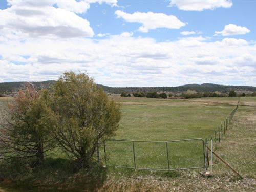 Irrigated Land South Pof Chama NM : Rutheron : Rio Arriba County : New Mexico