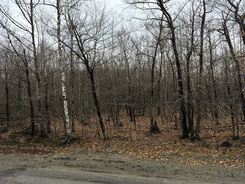 Land For Sale in Lowell, Maine : Lowell : Penobscot County : Maine