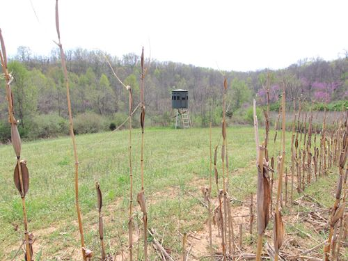 Kuhns Rd, 50 Acres : Amesville : Athens County : Ohio