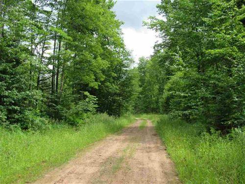 Donken-Tapiola Rd Mls 1113739 : Houghton : Michigan
