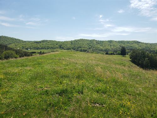 50+ Acre Farm With Gorgeous Views : Bulls Gap : Hawkins County : Tennessee