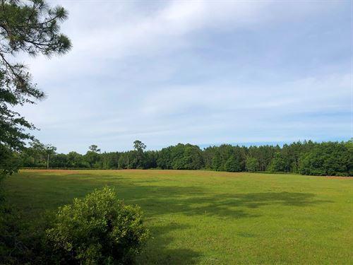10 Beautiful Acres Lake City : Lake City : Columbia County : Florida