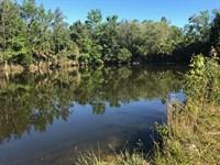 Steinhatchee Recreation & Timber : Cross City : Dixie County : Florida