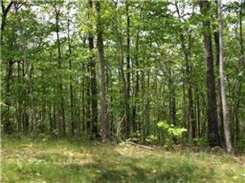 5+ Ac The Preserve At Laurel Creek : Wilder : Fentress County : Tennessee