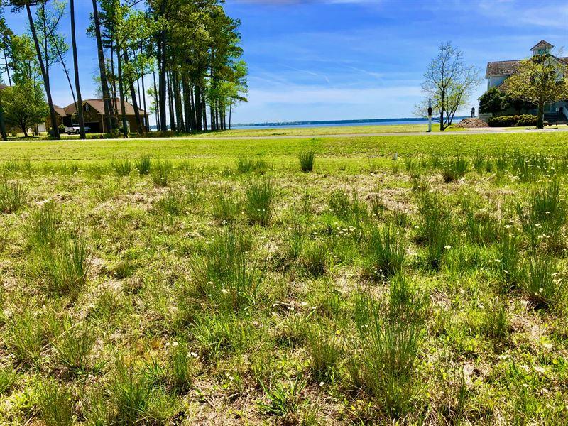 Residential Lot Belhaven Nc : Belhaven : Beaufort County : North Carolina