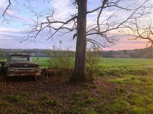238 Acre Farm in Lamar County, AL : Guin : Lamar County : Alabama