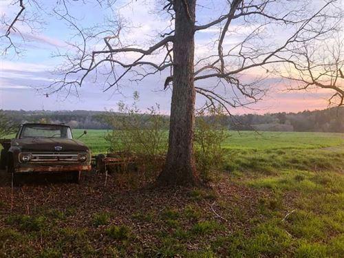 160 Acres, Lamar County, AL : Guin : Lamar County : Alabama