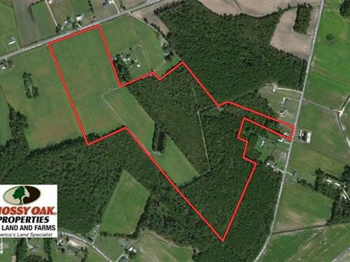 Under Contract, 76 Acres of Farm : Lumberton : Robeson County : North Carolina