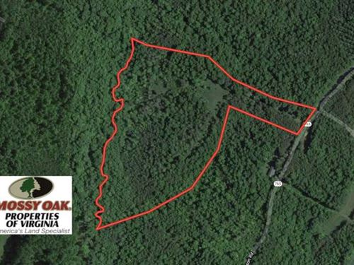 22 Acres of Timber Land With Clear : Nathalie : Halifax County : Virginia