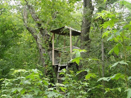 Cheap Arkansas Hunting Acreage : Calico Rock : Izard County : Arkansas