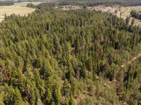 Hunting / Recreational Property : Weippe : Clearwater County : Idaho