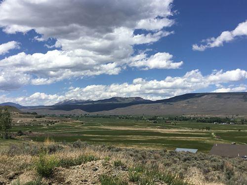 Beautiful Mountain Lot : Gunnison : Colorado