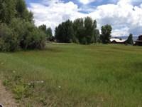 North Elk Meadows Lot : Gunnison : Gunnison County : Colorado
