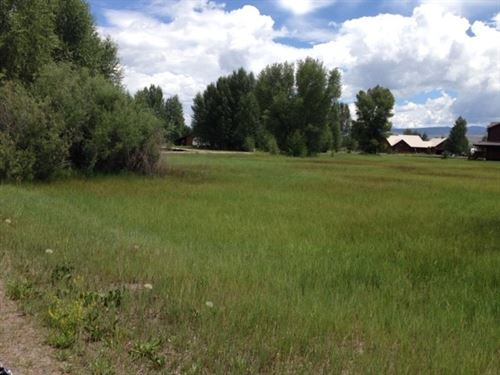 North Elk Meadows Lot : Gunnison : Colorado