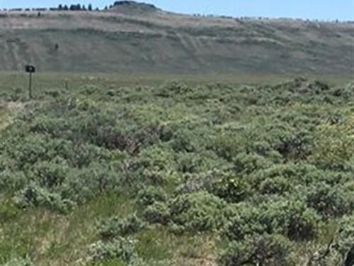 County Road 26 Parcel 2 : Gunnison : Colorado