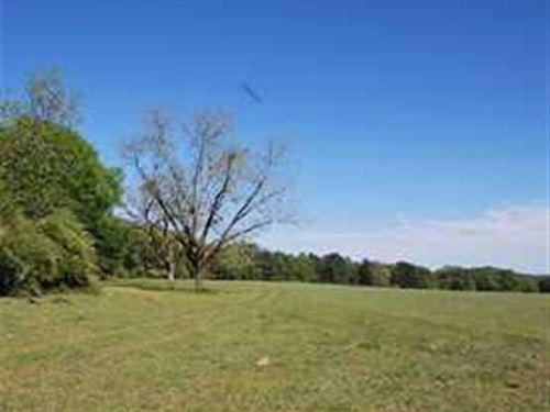 18 Acres With Beautiful Home Site : Prattville : Autauga County : Alabama