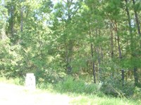 Perfect Building Lot Located in th : Eufaula : Barbour County : Alabama