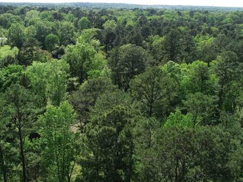 Twelve Mile Bayou Property, Caddo : Shreveport : Caddo Parish : Louisiana