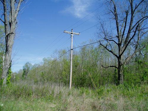 River Front Property S.E, MO : Zalma : Bollinger County : Missouri