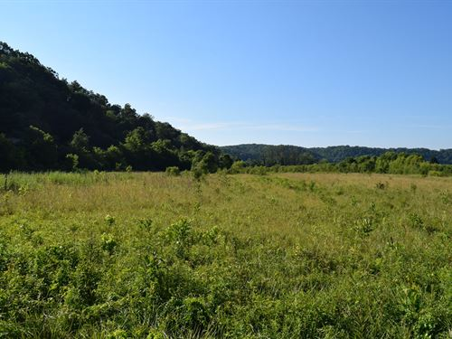 Unrestricted Tenn Land / Bybee : Bybee : Cocke County : Tennessee