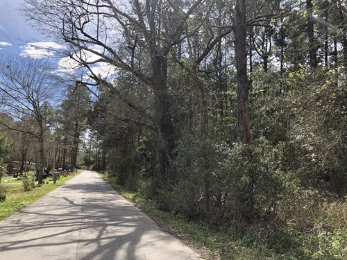 Wooded Acreage Near Horseshoe Lake : Lucedale : George County : Mississippi