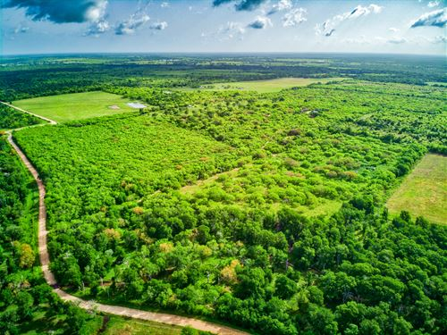Lush Hunting, Recreation & Ranching : Waelder : Fayette County : Texas