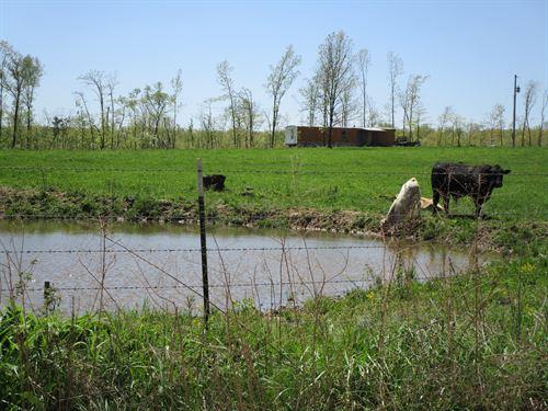 40 Acre Farm, Pasture, Woods, Pond : Birch Tree : Shannon County : Missouri