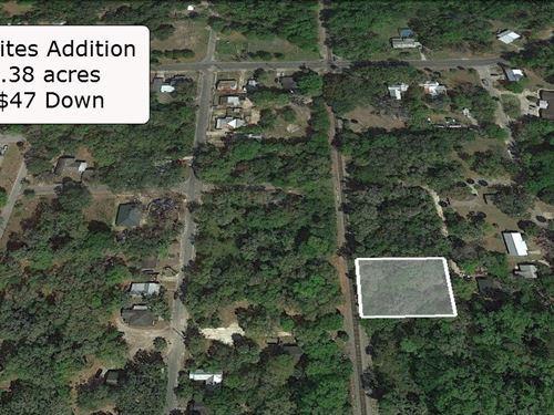 .38 Acre Near St Johns River : Palatka : Putnam County : Florida