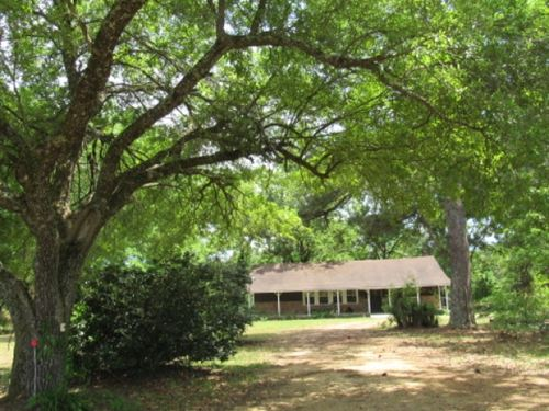 Home And 23.5 Acres : Tylertown : Walthall County : Mississippi