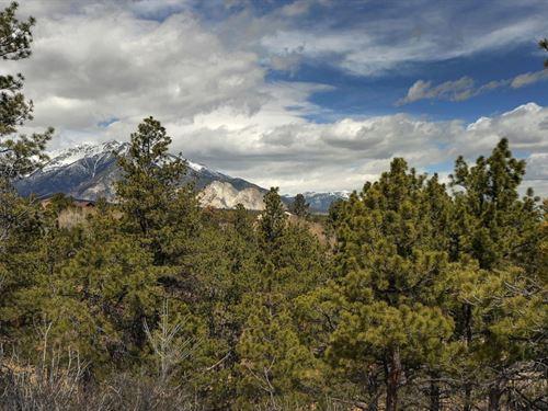 3919448, Fantastic Views : Nathrop : Chaffee County : Colorado