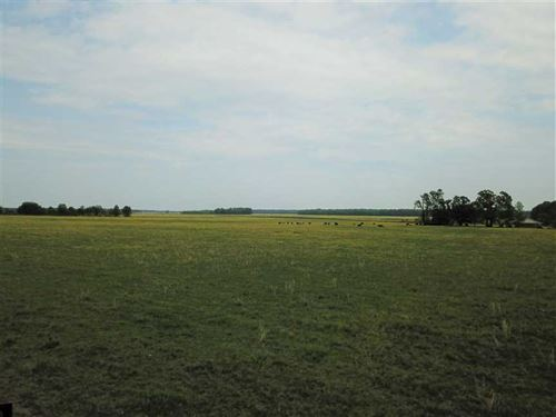 657 Acre Cattle Farm For Sale : Beebe : Prairie County : Arkansas
