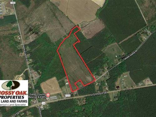 23.35 Acres of Hunting And Timber : Gates : North Carolina