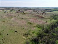 40 Acres of Excellent Hunting : Saint John : Stafford County : Kansas
