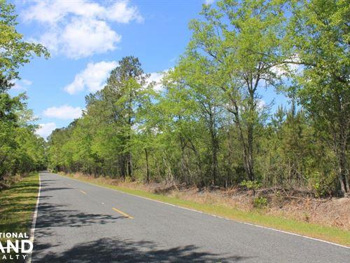 Lebanon Area Acreage And Homesite : Summerville : Berkeley County : South Carolina