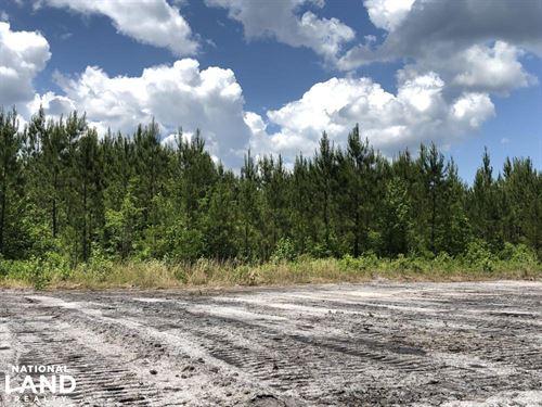 Berkeley County South Carolina Land For Sale Landflip