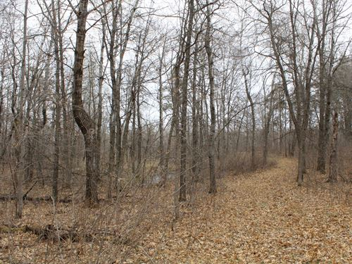 80 Acres Land For Sale Cass County : Motley : Cass County : Minnesota
