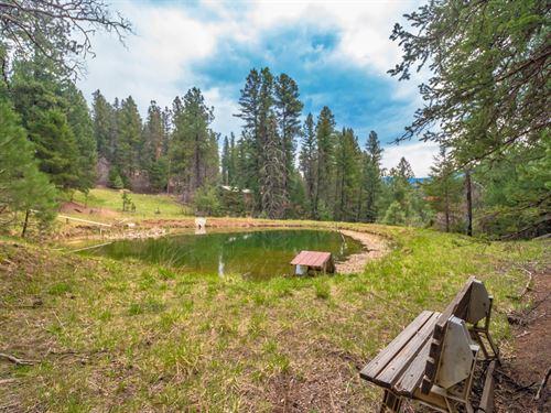 Cabin Pond Waterfall Subdivision : Cloudcroft : Otero County : New Mexico