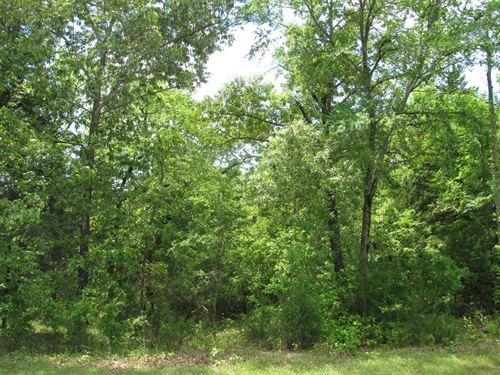 Wooded Lot East Tx, Lot Wildlife : Larue : Henderson County : Texas
