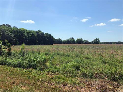 Marlboro County Sc Tillable Land : McColl : Marlboro County : South Carolina