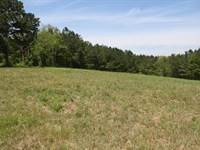 Country Acreage Waiting For You : Woodland : Randolph County : Alabama