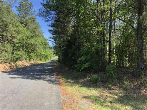 Haynes 198 : Stover : Fairfield County : South Carolina