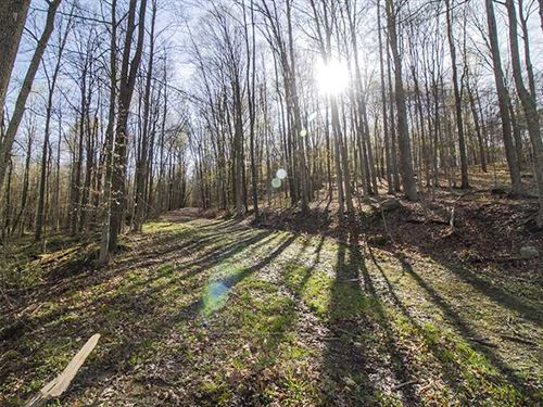 Opossum Run Rd, 50 Acres, Richla : Mansfield : Richland County : Ohio