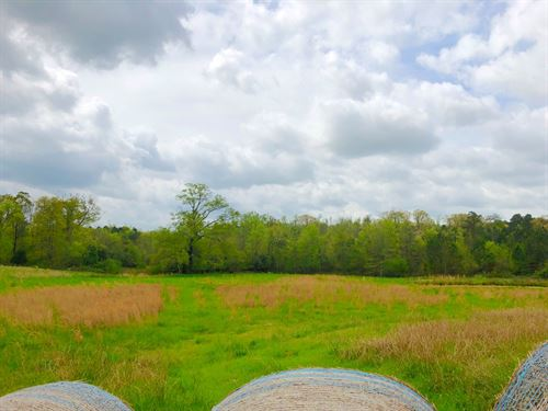 Hay Field, Pond, Country Acreage : Bonnerdale : Hot Spring County : Arkansas