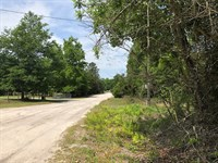 .98 Acres In Spring Hills S/D : Fort White : Columbia County : Florida